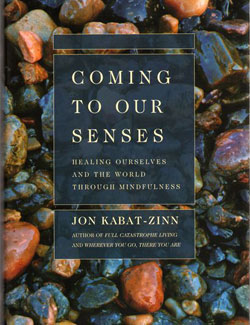 coming-to-our-senses-book